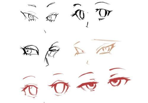 目のバリエーション